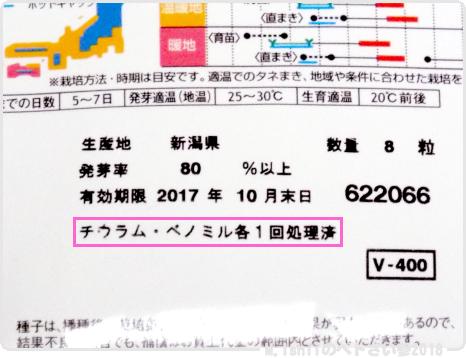 ペトさい(ミニかぼちゃ)05