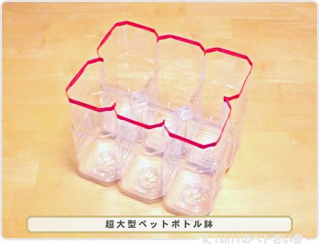 ペトさい(ペットボトル鉢)08