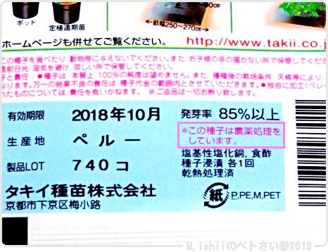 ペトさい(ミニメロン)02