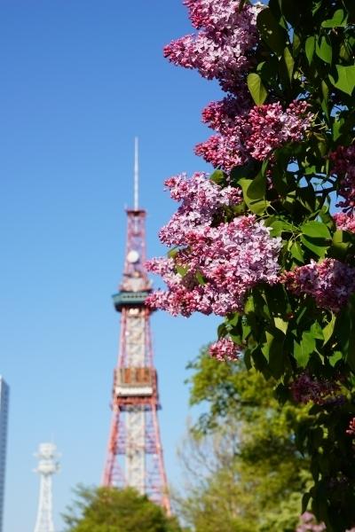 【札幌ぶらり歩き】豊平公園と大通公園