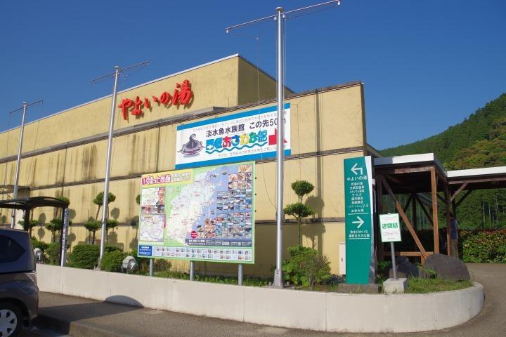IMGP4950.jpg
