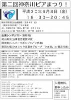 第二回神奈川ピアまつり チラシ_01