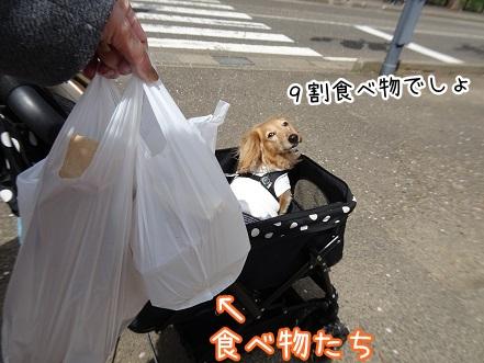kinako9332.jpg