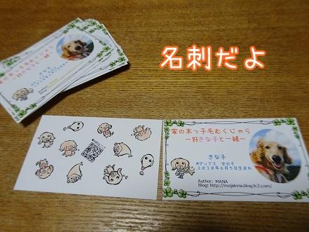 kinako9345.jpg