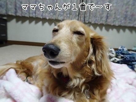 kinako9373.jpg