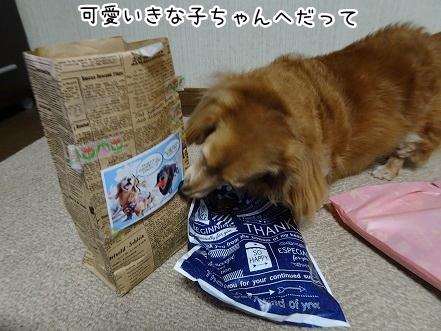 kinako9430.jpg