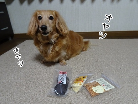 kinako9431.jpg