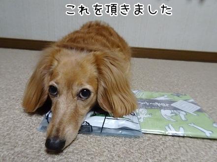 kinako9433.jpg