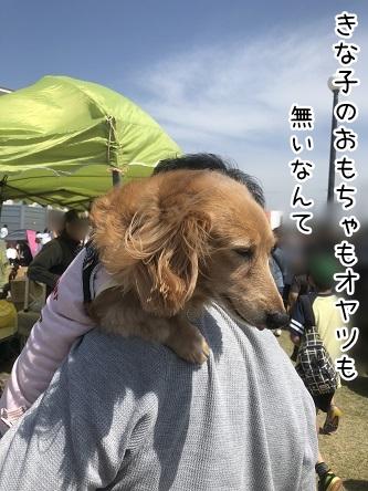 kinako9621.jpeg
