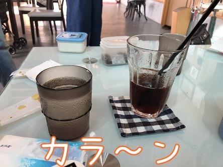 kinako9766.jpeg