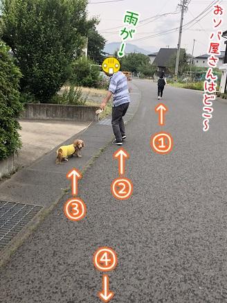 kinako9802.jpeg