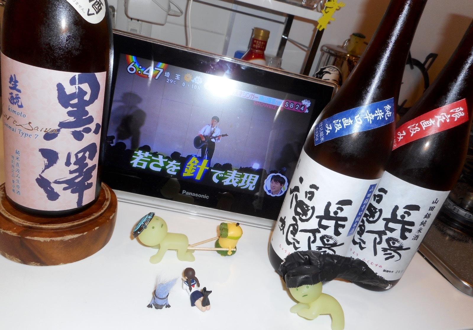 kurosawa_type7_2_29by8.jpg