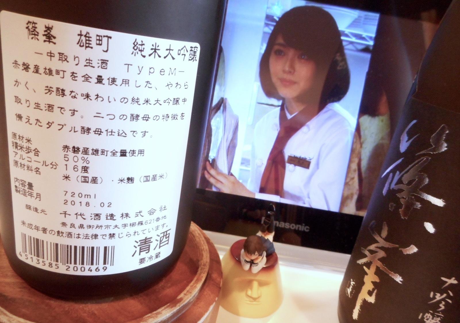 shinomine_typeM29by2.jpg