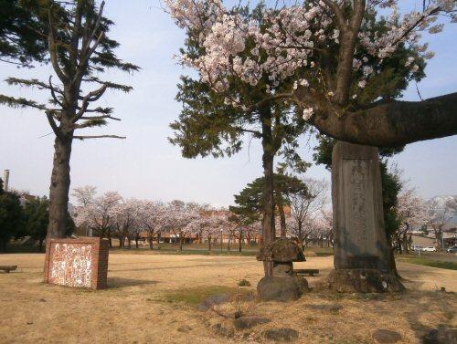 02b 500 20180403 記念碑 桜並木