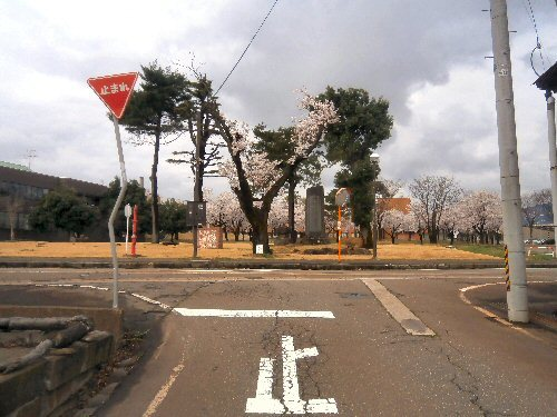 01c 500 20180405 記念碑桜並木overview