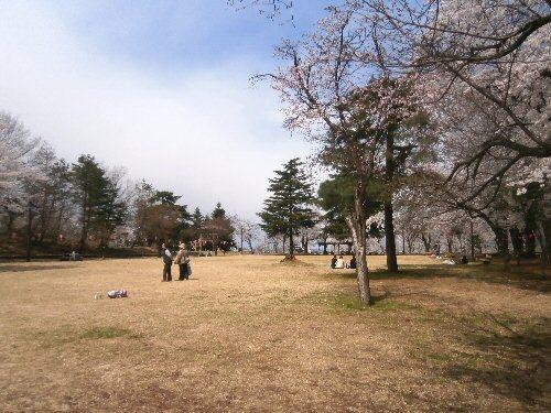 00b 500 20180408 経塚山桜02