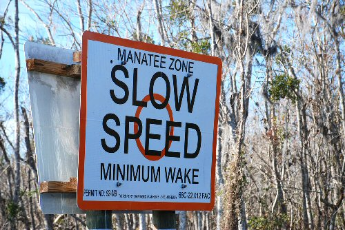 3a 500 sign manatee wake