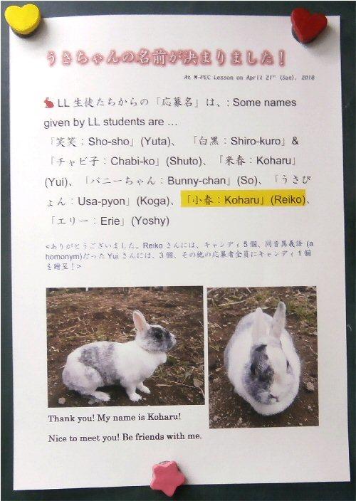 01a 500 20180423 sign koharu named