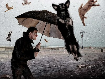 04a 400 raining cats and dogs