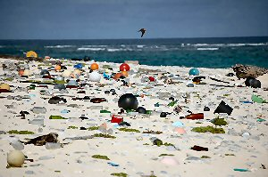 02a 300 beach plastic debris