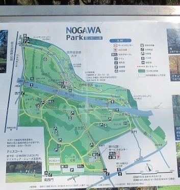 野川公園180328