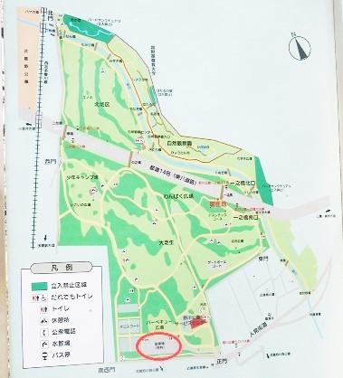 野川公園180328⑰
