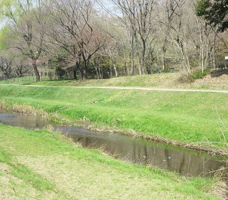 野川公園180328⑳①