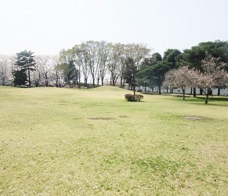 野川公園180328⑳⑳⑳⑳②