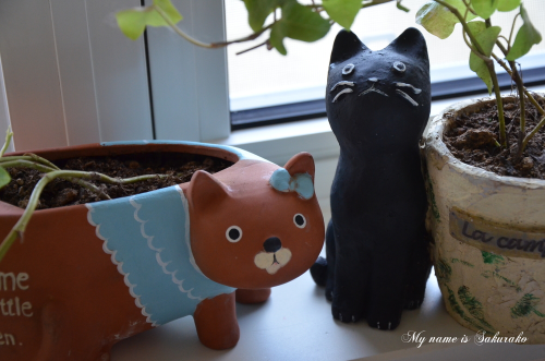 庭の猫ちゃんたち②