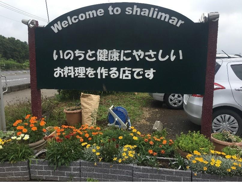 sharima4.jpg