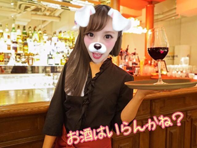 S__17997835.jpg