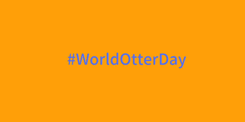 #WorldOtterDay