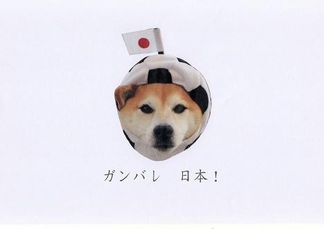ガンバレ日本-s