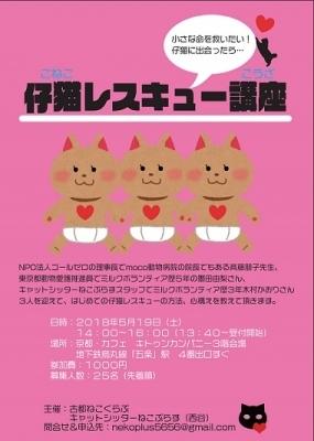 仔猫レスキュー201805_1☆