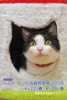 ペット写真教室展2018_1☆