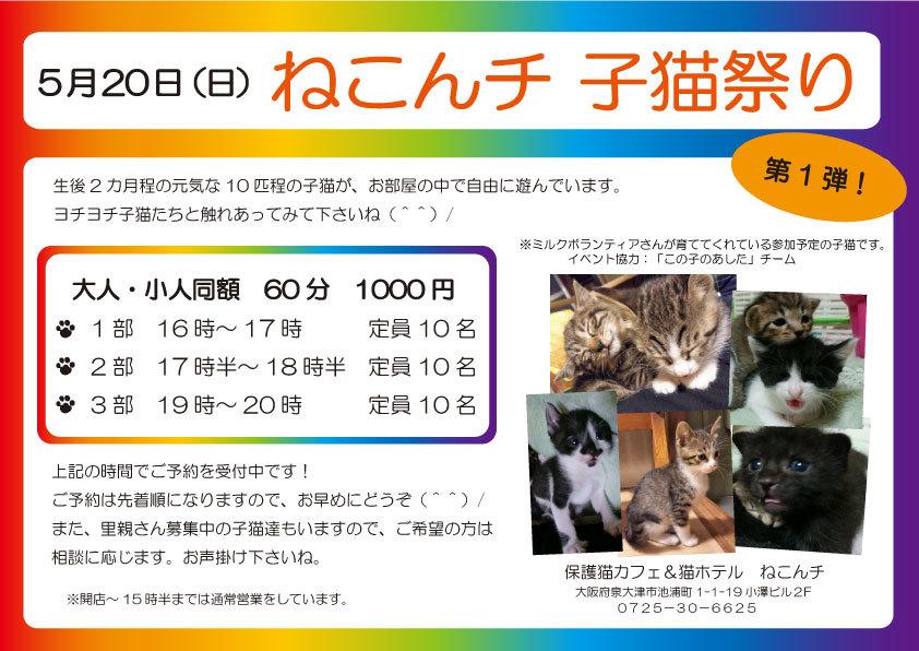 5月20日 子猫祭り チラシ