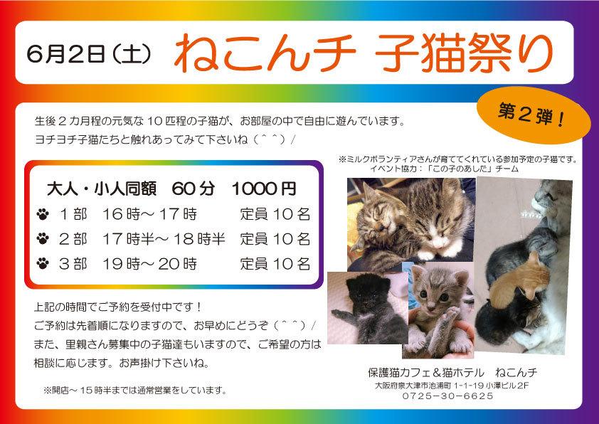 6月2日 子猫祭り チラシ