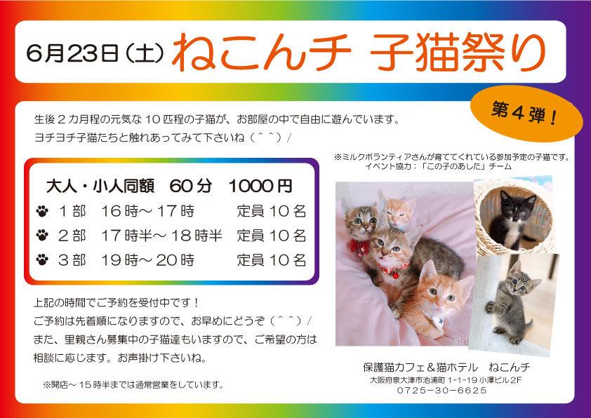 6月23日 子猫祭り チラシ