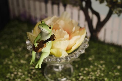 ツバキアキラが撮ったカエルのコポー。花の入ったガラスの上で、うっとりロマンティック気分でウクレレを弾くコポタロウ。