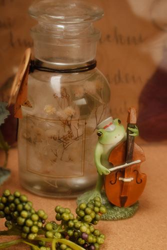 ツバキアキラが撮ったカエルのコポー。シックなハーバリウムのそばで、コントラバスを奏でるコポタロウ。