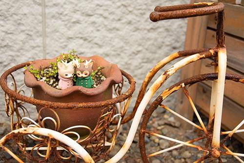 ツバキアキラが撮った、VAG・MORRIS、通称・つのねこ。古い自転車に乗って、どこかへ行こうとしています。