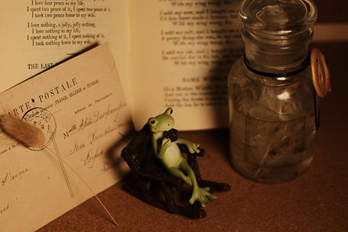 ツバキアキラが撮ったカエルのコポー。アンティークな空間で、懐かしいコーヒーの味に思いを馳せるコポタロウ。