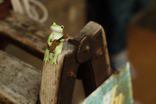 ツバキアキラが撮ったカエルのコポー。店先の素敵なディスプレイに、ちょこんと座ってウクレレを弾くコポタロウ。
