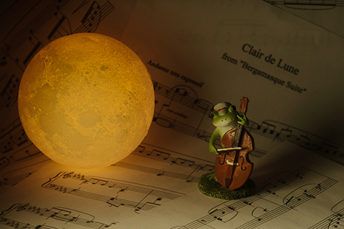 ツバキアキラが撮ったカエルのコポー。月の光に照らされて、コントラバスでドビュッシーの「月の光」を弾くコポタロウ。