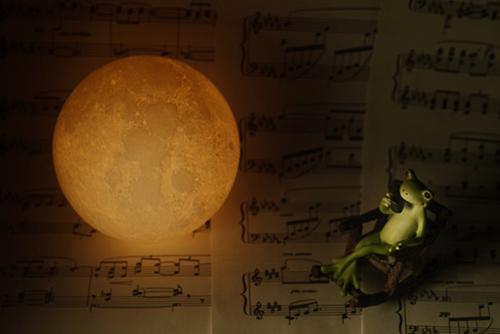ツバキアキラが撮ったカエルのコポー。月の光に照らされて、音楽を聴きながら、コーヒーを飲むコポタロウ。
