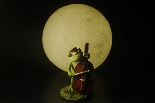 ツバキアキラが撮ったカエルのコポー。月夜の晩に、静かにコントラバスを奏でるコポタロウ。