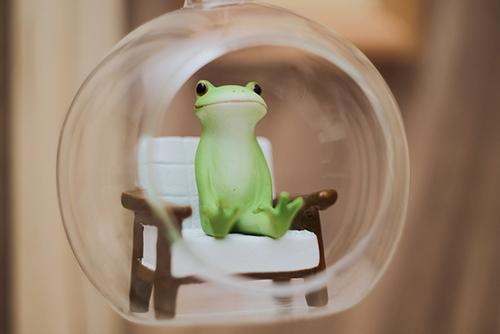 ツバキアキラが撮ったカエルのコポー。ガラス玉の中で座っているコポタロウ。