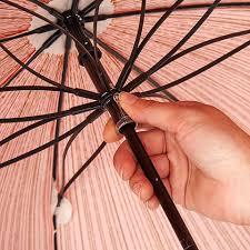 ベニテングタケの傘2