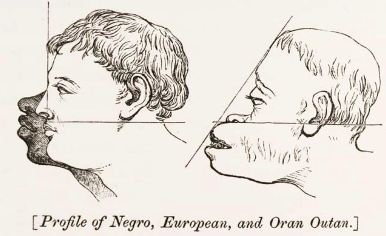 西欧世界での人種差別の証拠