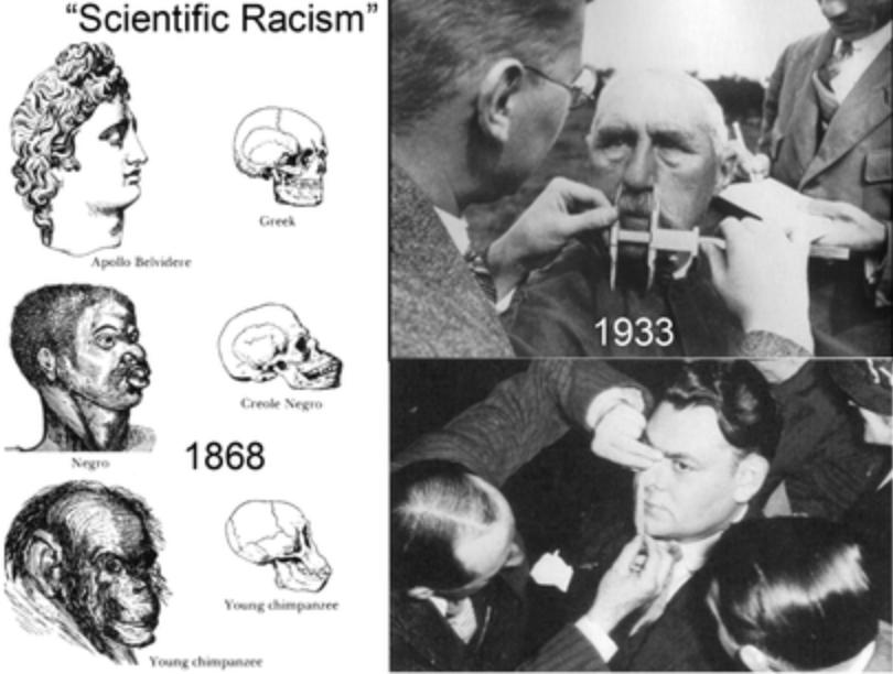 西欧世界での人種差別の証拠2